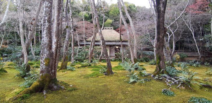 祇王寺の庭園と草庵