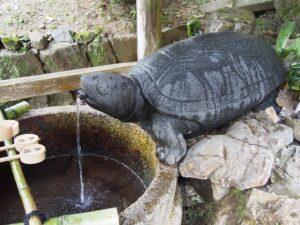 松尾大社の亀の井