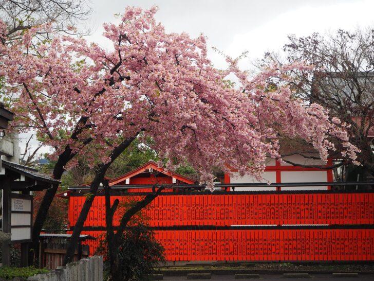 車折神社の参拝情報