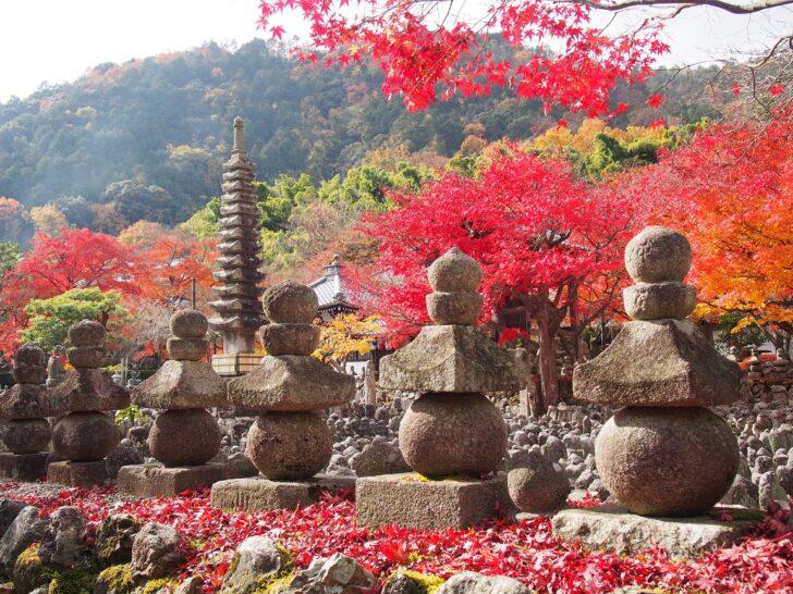 化野念仏寺の参拝情報