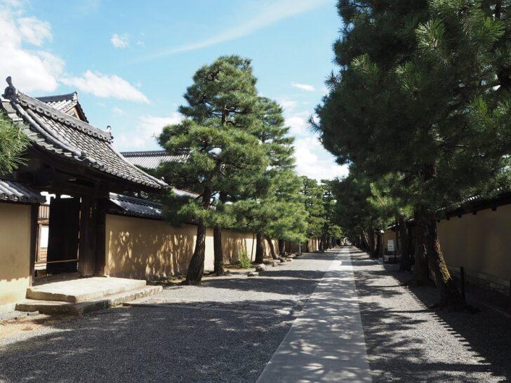 大徳寺の参拝情報