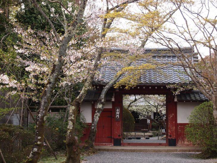 常照寺の歴史や見どころをご紹介