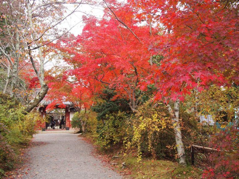 吉野の赤門