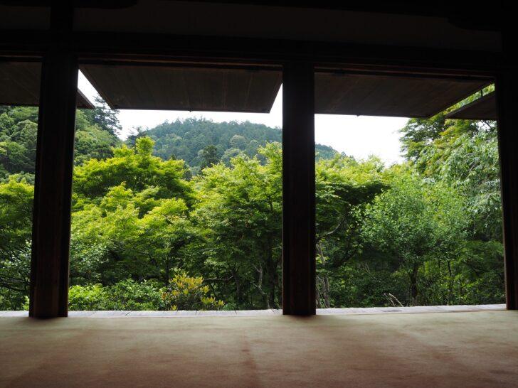 南の縁側からの景色