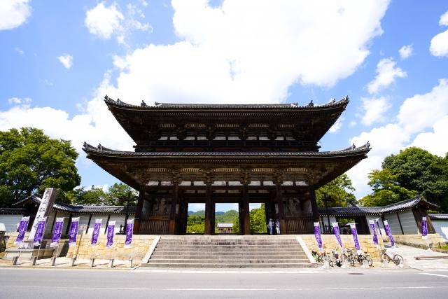 仁和寺の歴史や見どころをご紹介