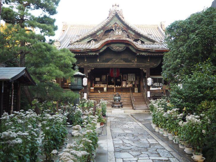 行願寺(革堂)の歴史や見どころをご紹介
