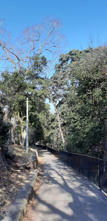 北堀公園へのスロープ