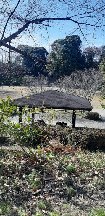 北堀公園のテニスコート