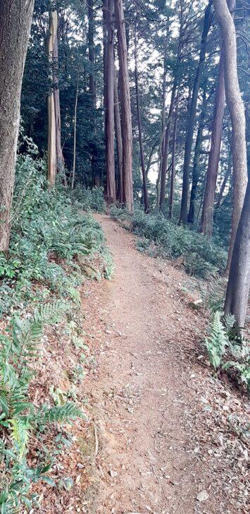 岡崎の景色を右手に下る