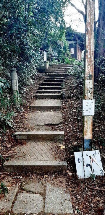 尊勝院の階段