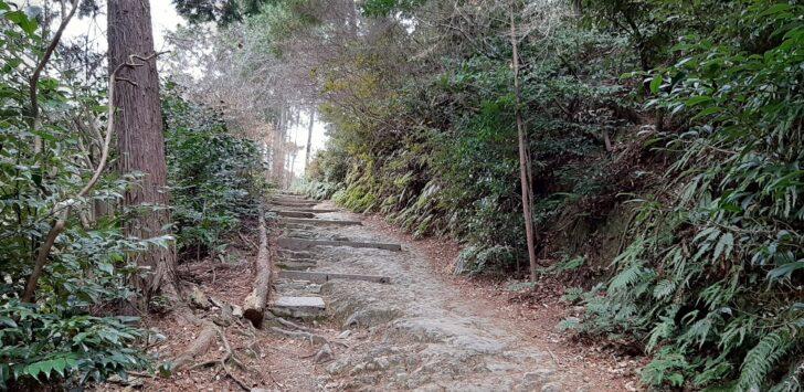 日向大神宮の山道