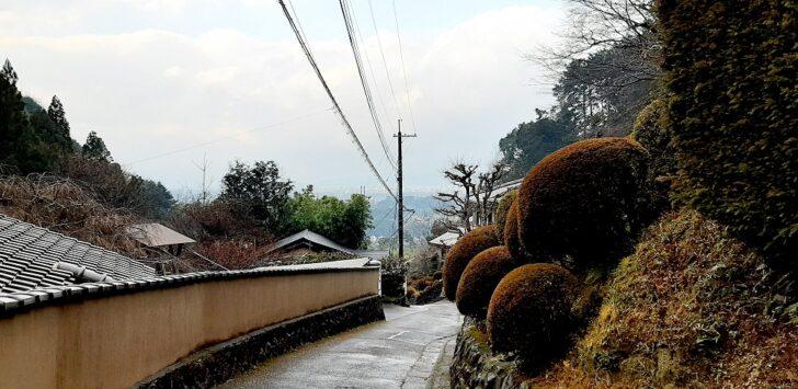 大文字山下山後の舗装道路