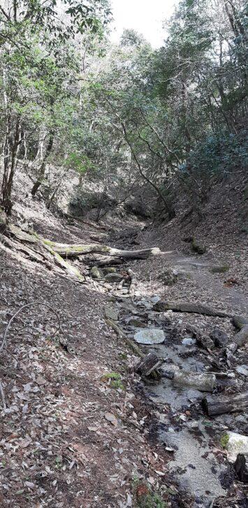 川の上を歩く