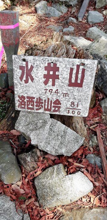 水井山山頂