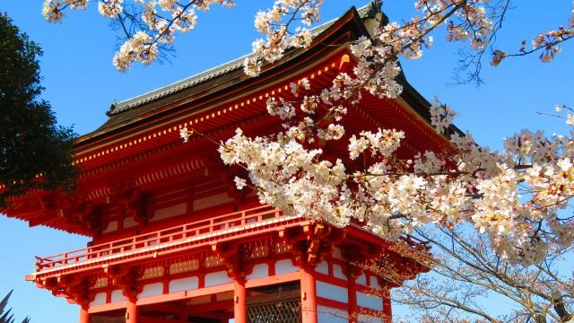 3月下旬の清水寺