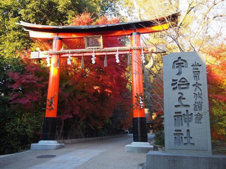 宇治上神社の参道
