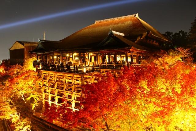 11月の京都紅葉情報