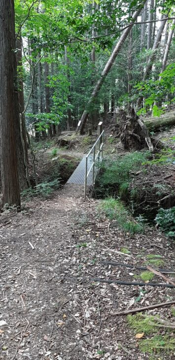案内板54-2(北山)周辺の橋
